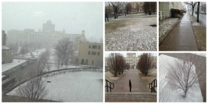 Campus grounds this afternoon